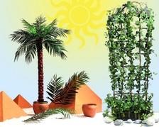 Kunstpflanzen & Zubehör