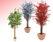 Pflanzen mit Blattwerk