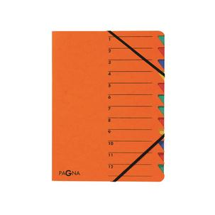 "PAGNA Ordnungsmappe /""Sorting File/"" 12 Fächer 1-12 DIN A4 aus Karton hellblau"